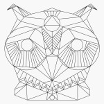 The Divine Owl